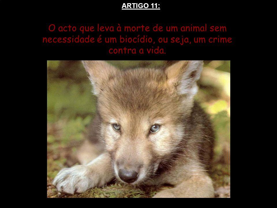 O acto que leva à morte de um animal sem necessidade é um biocídio, ou seja, um crime contra a vida. ARTIGO 11: