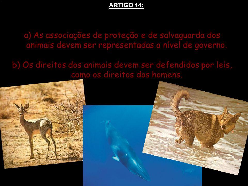 a)As associações de proteção e de salvaguarda dos animais devem ser representadas a nível de governo. b) Os direitos dos animais devem ser defendidos