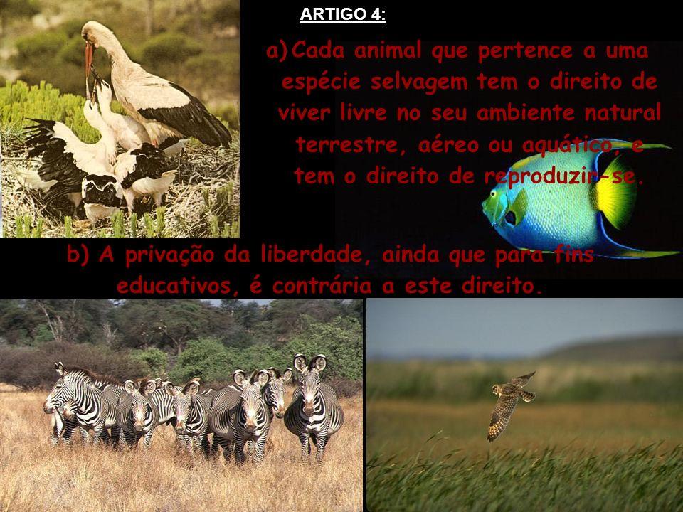 a)Cada animal que pertence a uma espécie selvagem tem o direito de viver livre no seu ambiente natural terrestre, aéreo ou aquático, e tem o direito d