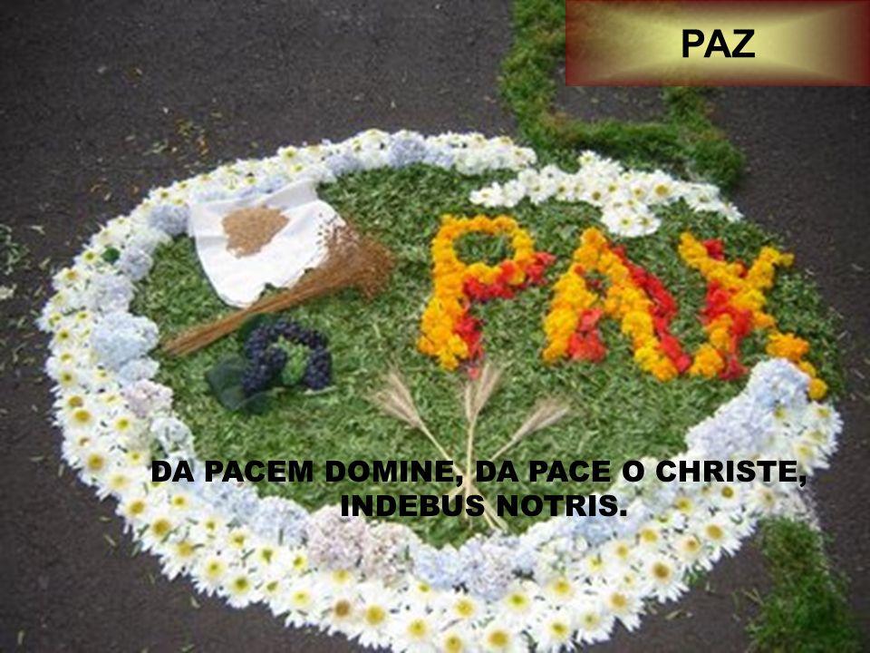 DA PACEM DOMINE, DA PACE O CHRISTE, INDEBUS NOTRIS. PAZ