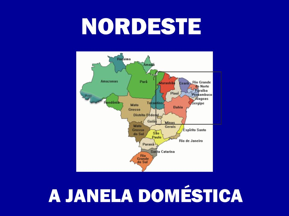 NORDESTE A JANELA DOMÉSTICA