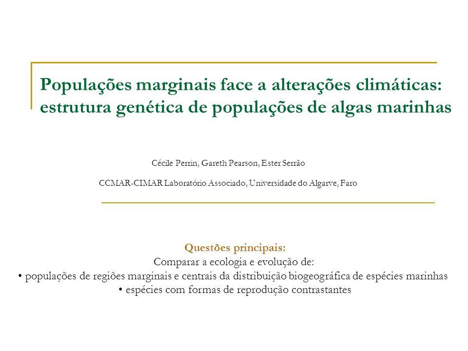 Populações marginais face a alterações climáticas: estrutura genética de populações de algas marinhas Cécile Perrin, Gareth Pearson, Ester Serrão CCMA