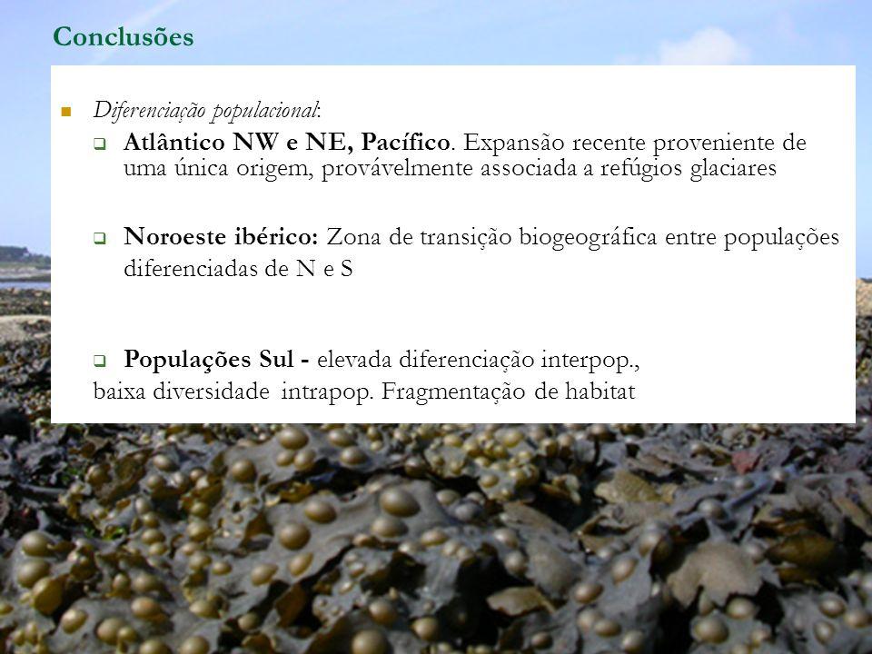 Conclusões Diferenciação populacional: Atlântico NW e NE, Pacífico. Expansão recente proveniente de uma única origem, provávelmente associada a refúgi