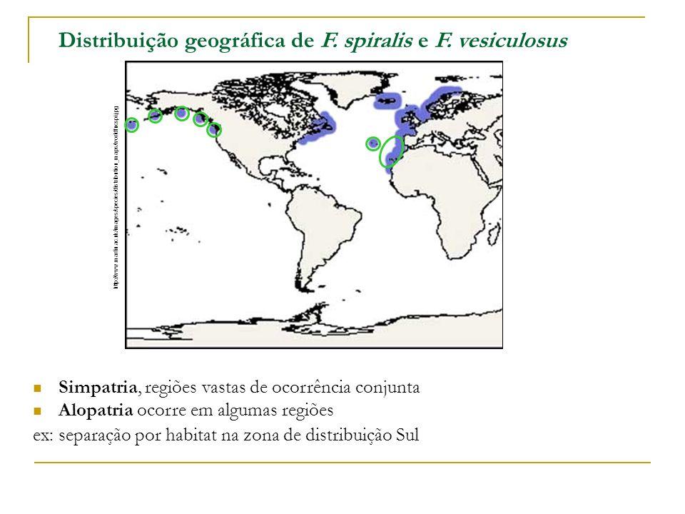 Distribuição geográfica de F. spiralis e F. vesiculosus Simpatria, regiões vastas de ocorrência conjunta Alopatria ocorre em algumas regiões ex: separ