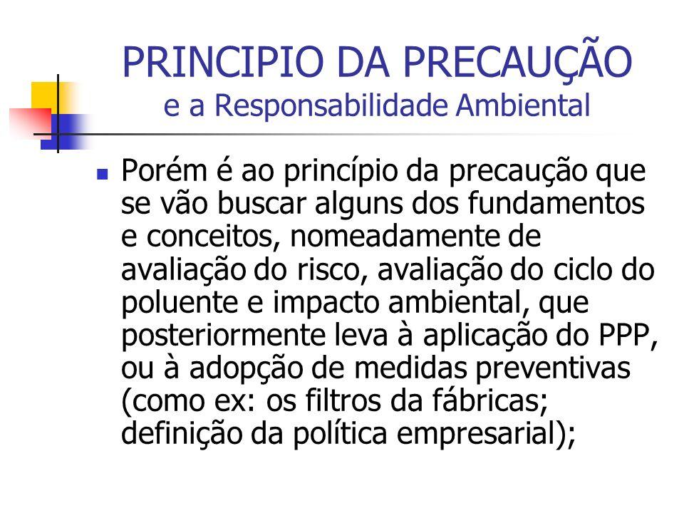 PRINCIPIO DA PRECAUÇÃO e a Responsabilidade Ambiental Porém é ao princípio da precaução que se vão buscar alguns dos fundamentos e conceitos, nomeadam