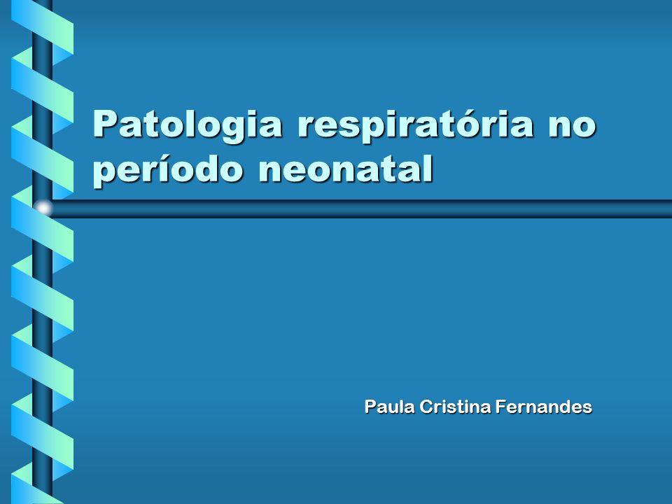 Patologia respiratória no período neonatal Paula Cristina Fernandes Paula Cristina Fernandes