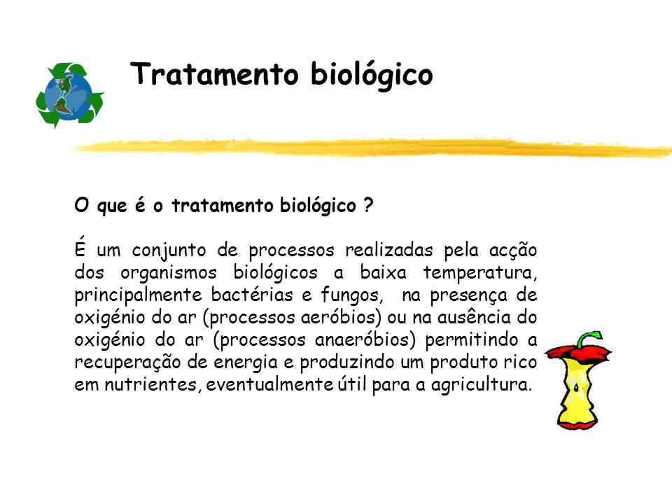 Tratamento biológico O que é o tratamento biológico ? É um conjunto de processos realizadas pela acção dos organismos biológicos a baixa temperatura,