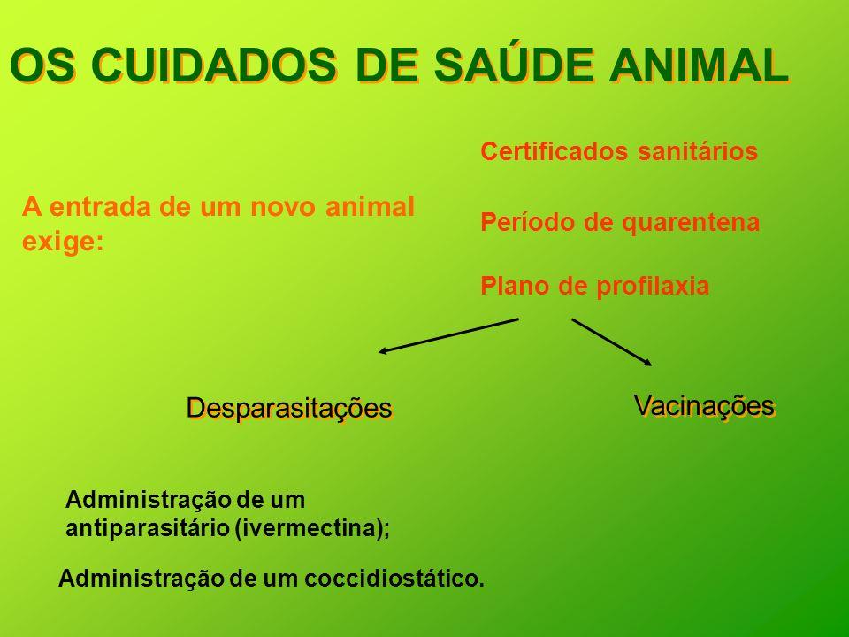 OS CUIDADOS DE SAÚDE ANIMAL A entrada de um novo animal exige: Certificados sanitários Período de quarentena Plano de profilaxia Administração de um a