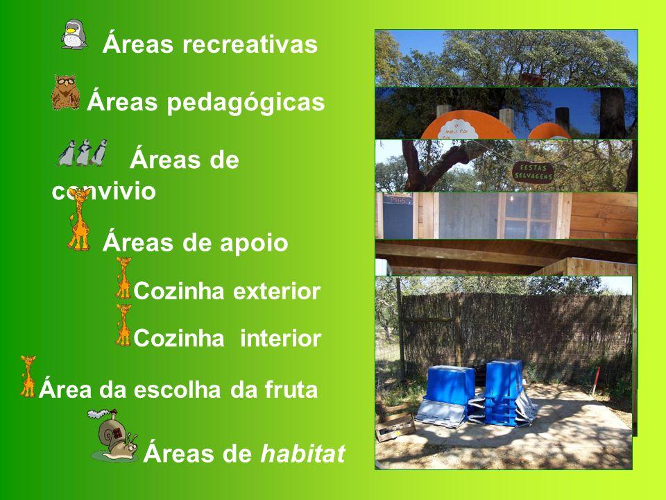 OS ANIMAIS DO MONTE SELVAGEM Parque grande Mamíferos Axis Cervicapras Elandes Iaques Watussis Aves Avestruzes Cisnes Emas Gansos Nandus Patos Lamas
