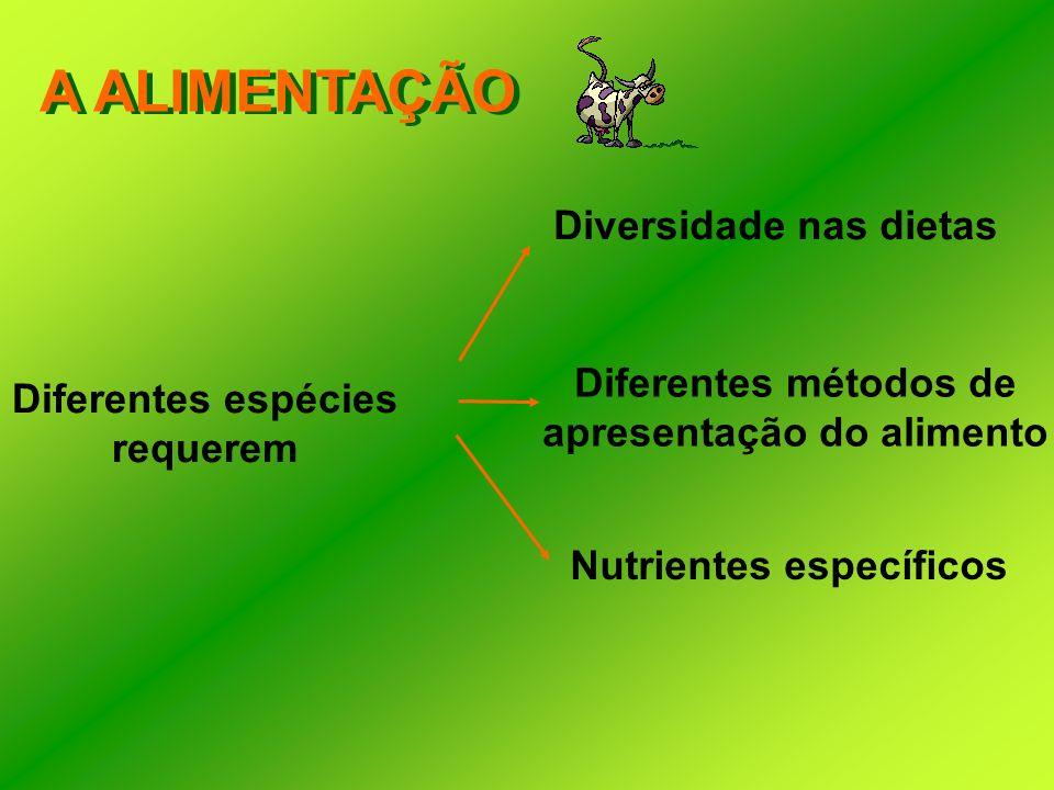 A ALIMENTAÇÃO Diferentes espécies requerem Diversidade nas dietas Diferentes métodos de apresentação do alimento Nutrientes específicos