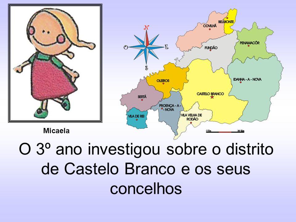 Eu sou de Castelo Branco Sou Albicastrense André Gonçalves