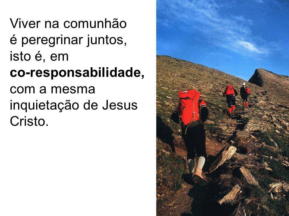 Viver na comunhão é peregrinar juntos, isto é, em co-responsabilidade, com a mesma inquietação de Jesus Cristo.