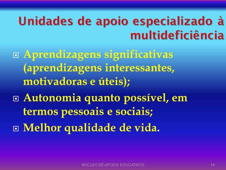 Aprendizagens significativas (aprendizagens interessantes, motivadoras e úteis); Autonomia quanto possível, em termos pessoais e sociais; Melhor quali