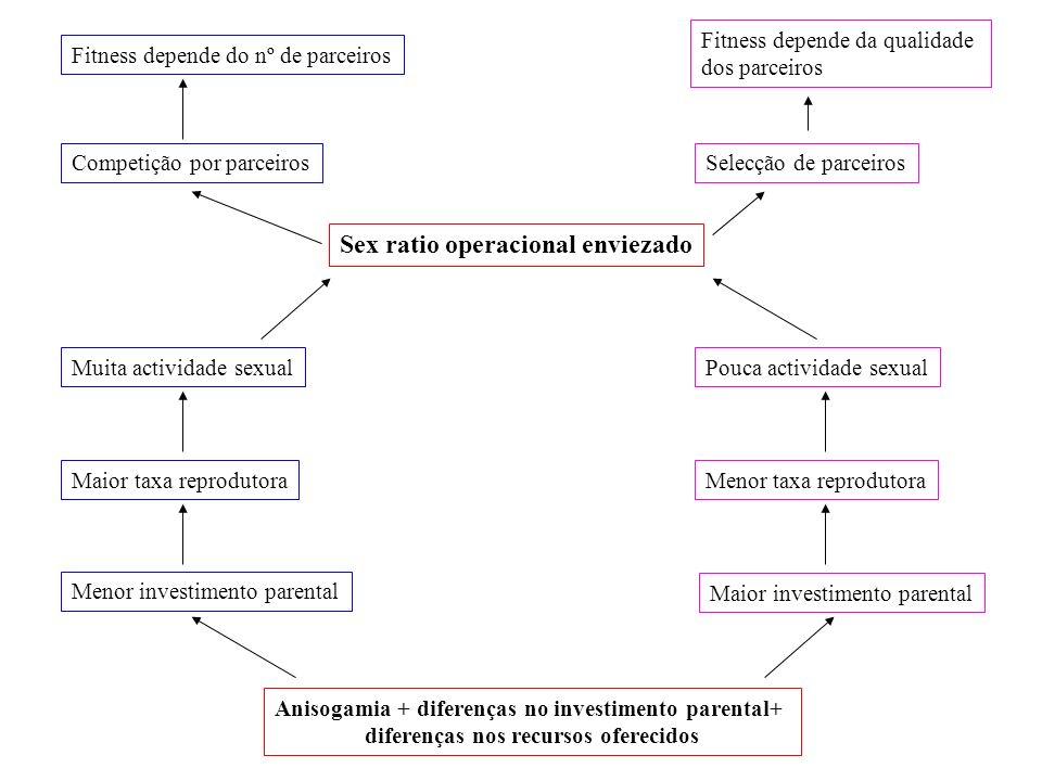 Anisogamia + diferenças no investimento parental+ diferenças nos recursos oferecidos Menor investimento parental Maior investimento parental Maior tax