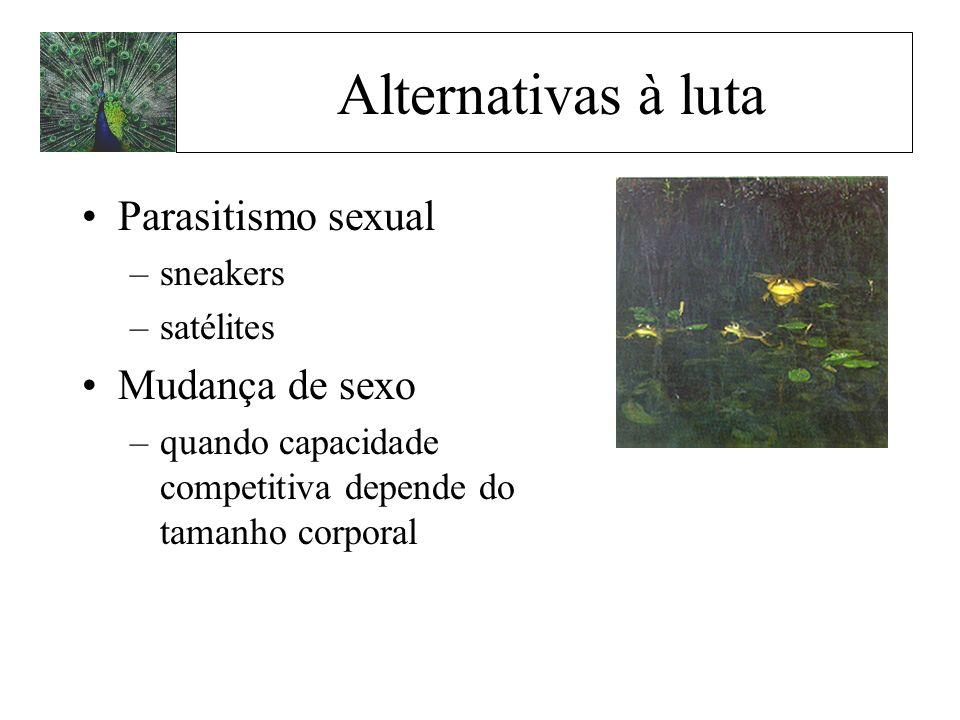 Alternativas à luta Parasitismo sexual –sneakers –satélites Mudança de sexo –quando capacidade competitiva depende do tamanho corporal