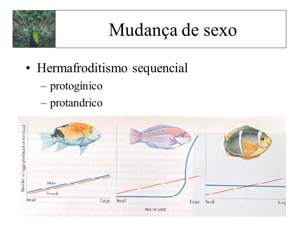 Mudança de sexo Hermafroditismo sequencial –protogínico –protandrico