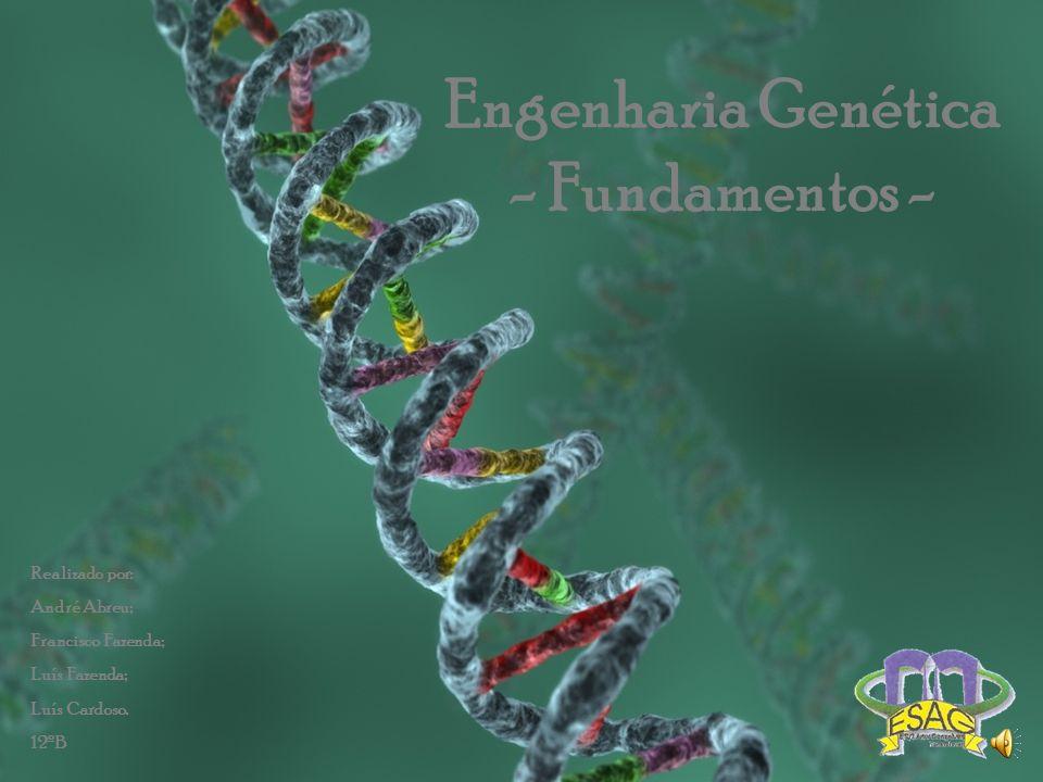 Engenharia Genética - Fundamentos - Realizado por: André Abreu; Francisco Fazenda; Luís Fazenda; Luís Cardoso. 12ºB