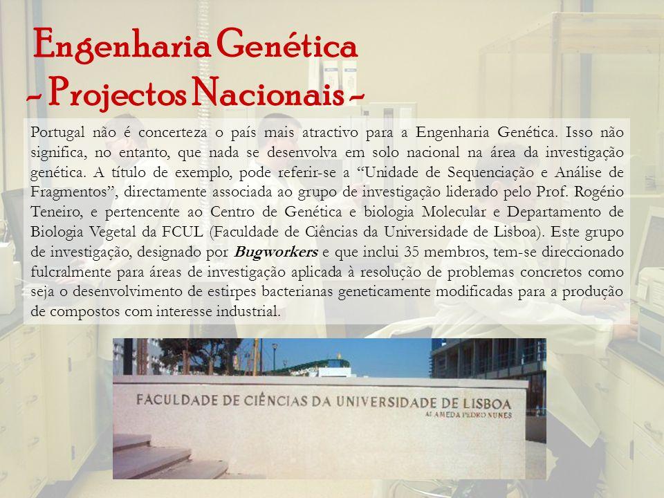 Engenharia Genética - Projectos Nacionais - Portugal não é concerteza o país mais atractivo para a Engenharia Genética. Isso não significa, no entanto