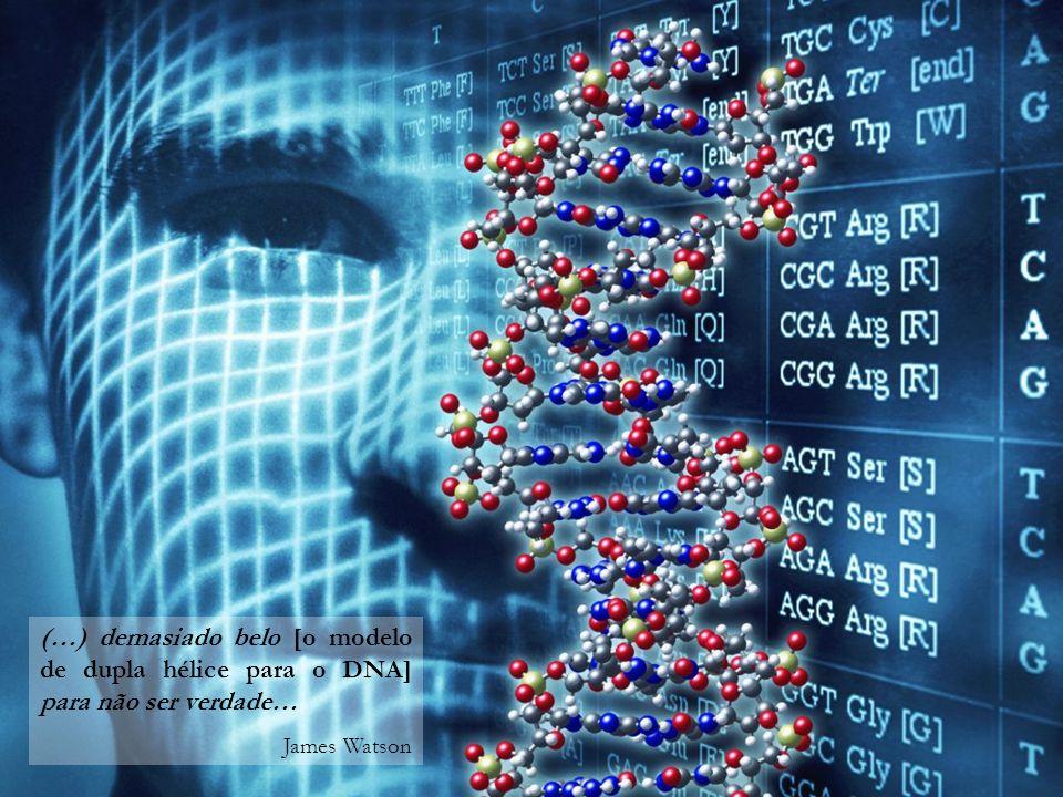 (…) demasiado belo [o modelo de dupla hélice para o DNA] para não ser verdade… James Watson