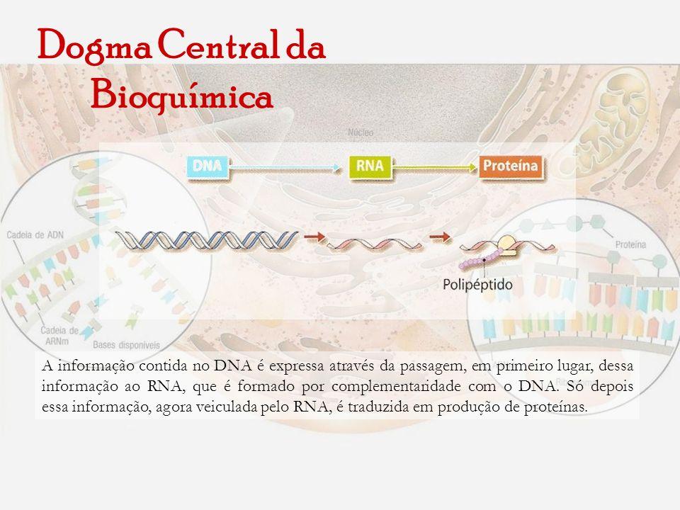 Dogma Central da Bioquímica A informação contida no DNA é expressa através da passagem, em primeiro lugar, dessa informação ao RNA, que é formado por