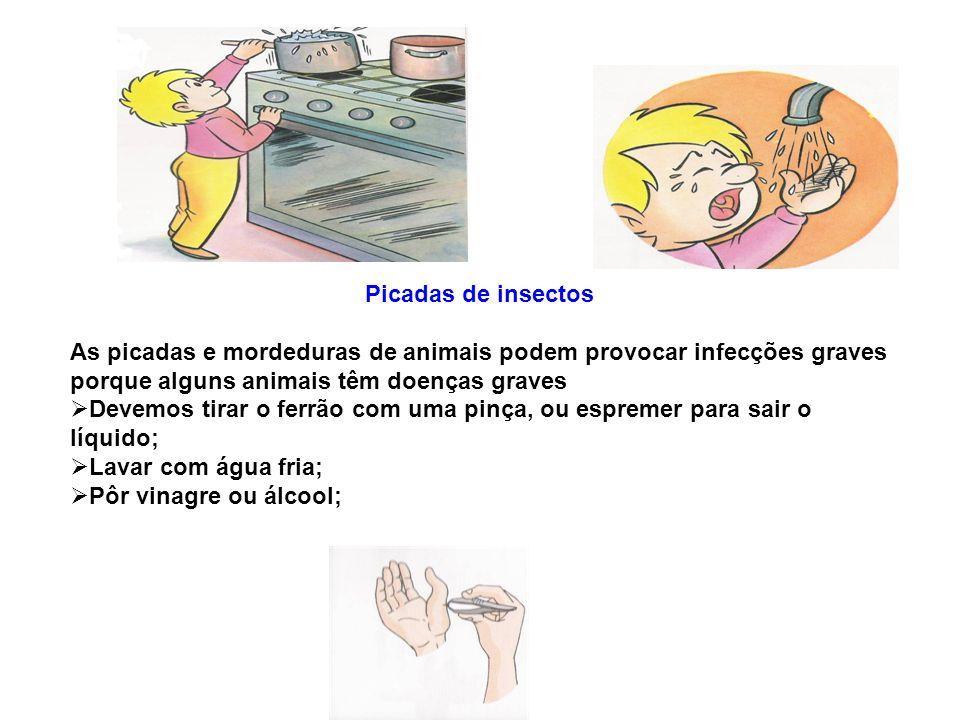 Picadas de insectos As picadas e mordeduras de animais podem provocar infecções graves porque alguns animais têm doenças graves Devemos tirar o ferrão
