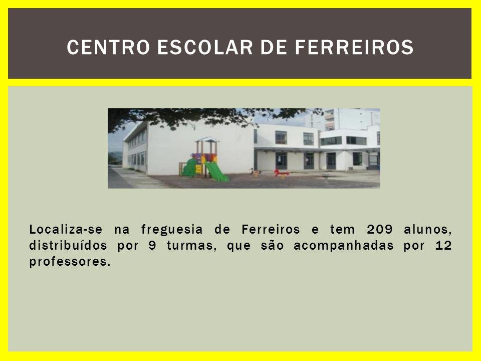 Localiza-se na freguesia de Ferreiros e tem 209 alunos, distribuídos por 9 turmas, que são acompanhadas por 12 professores. CENTRO ESCOLAR DE FERREIRO