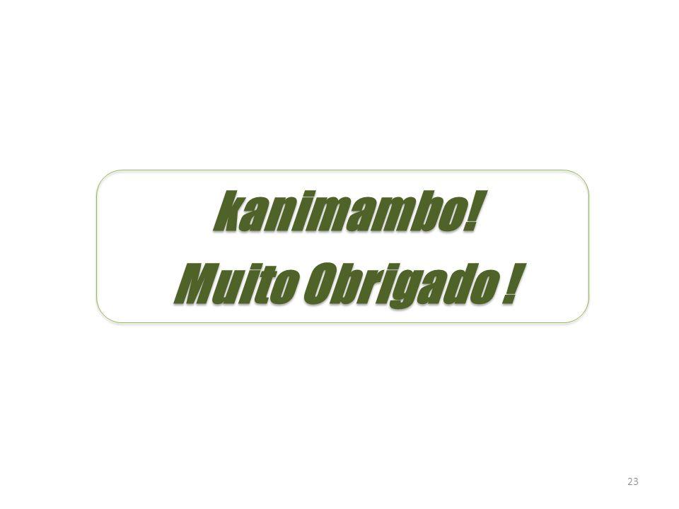 23 kanimambo! Muito Obrigado ! kanimambo! Muito Obrigado !