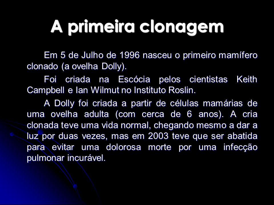 A primeira clonagem Em 5 de Julho de 1996 nasceu o primeiro mamífero clonado (a ovelha Dolly). Foi criada na Escócia pelos cientistas Keith Campbell e