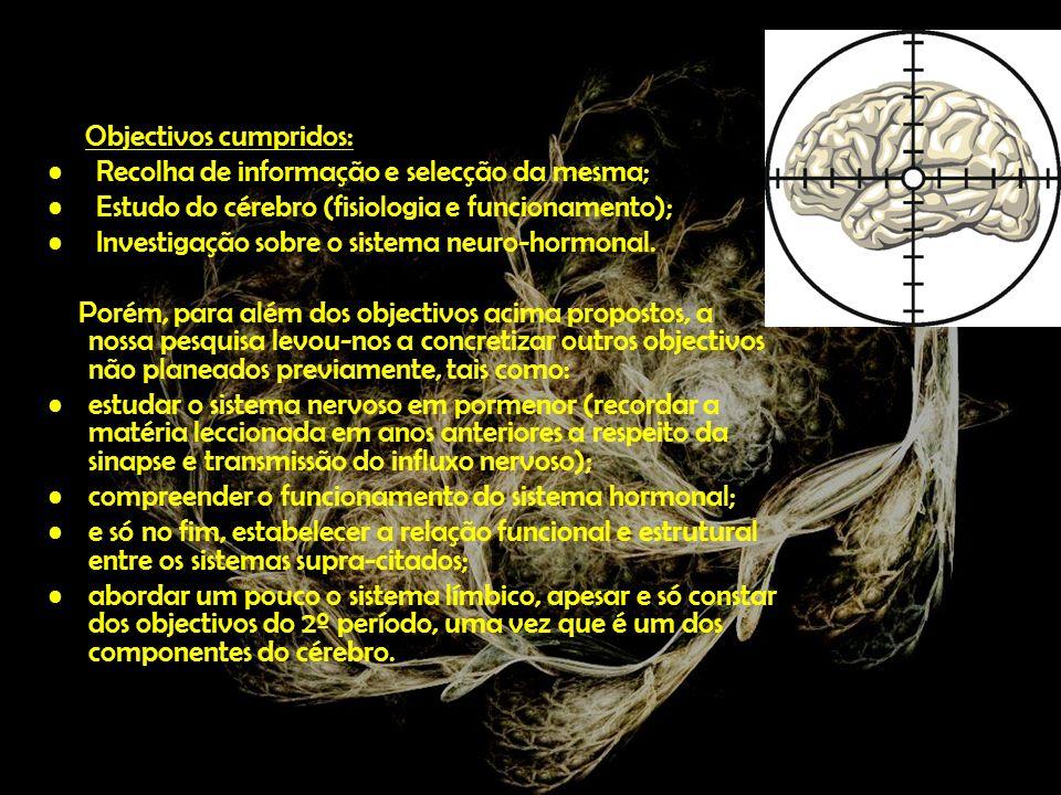 Cérebro e sistema nervoso O que é o cérebro.Porque precisamos de um sistema nervoso.