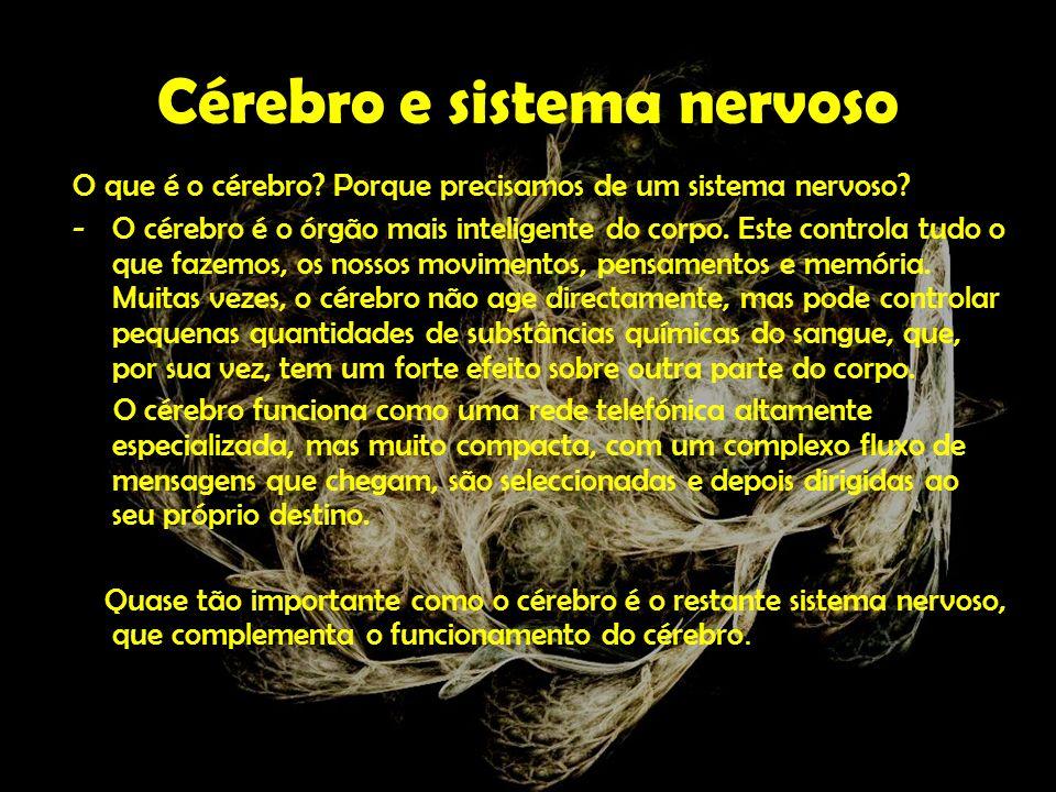 Sistema Nervoso Central Encéfalo Cérebro Córtex Cerebral Sistema Límbico Diencéfalo Tálamo Hipotálamo Tronco Encefálico Mesencéfalo Bolbo Raquidiano Cerebelo Espinal-medula Sistema Nervoso Periférico Gânglios Nervosos Nervos Cranianos Raquidianos