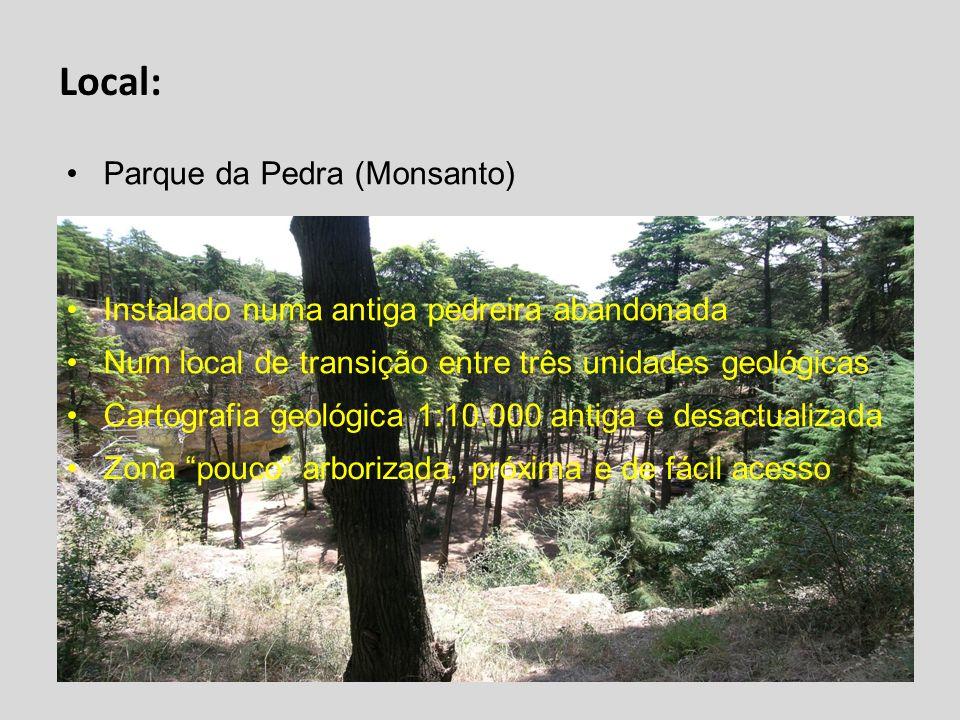 Local: Parque da Pedra (Monsanto) Instalado numa antiga pedreira abandonada Num local de transição entre três unidades geológicas Cartografia geológic