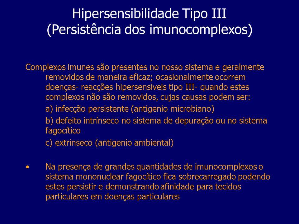 Hipersensibilidade Tipo III (Persistência dos imunocomplexos) Complexos imunes são presentes no nosso sistema e geralmente removidos de maneira eficaz