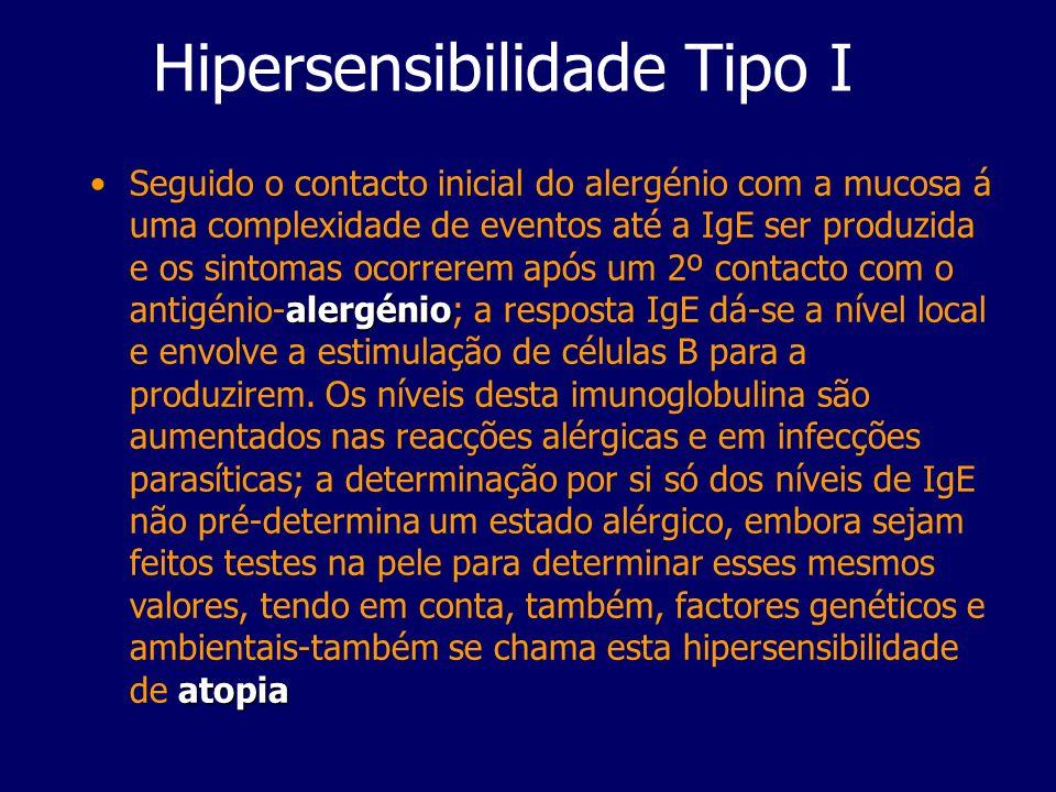 Hipersensibilidade Tipo I alergénio atopiaSeguido o contacto inicial do alergénio com a mucosa á uma complexidade de eventos até a IgE ser produzida e