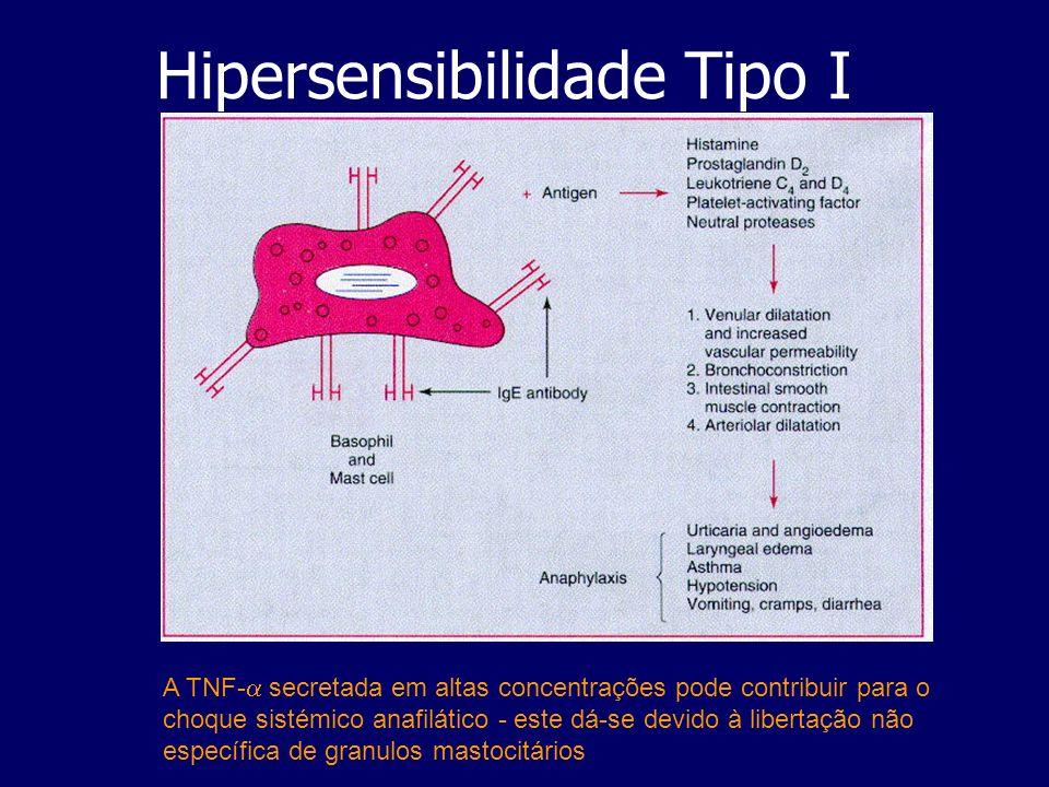 Hipersensibilidade Tipo IV Doenças que se fazem acompanhar de granulomas: -infecciosas ( Coxiella burnetti,Listeria…) -micobacterioses ( lepra e tuberculose) Silicose: doença pulmonar rara causada pela inalação de silica, ocorrendo inflamação e danificação tecidular - industrial lung disease