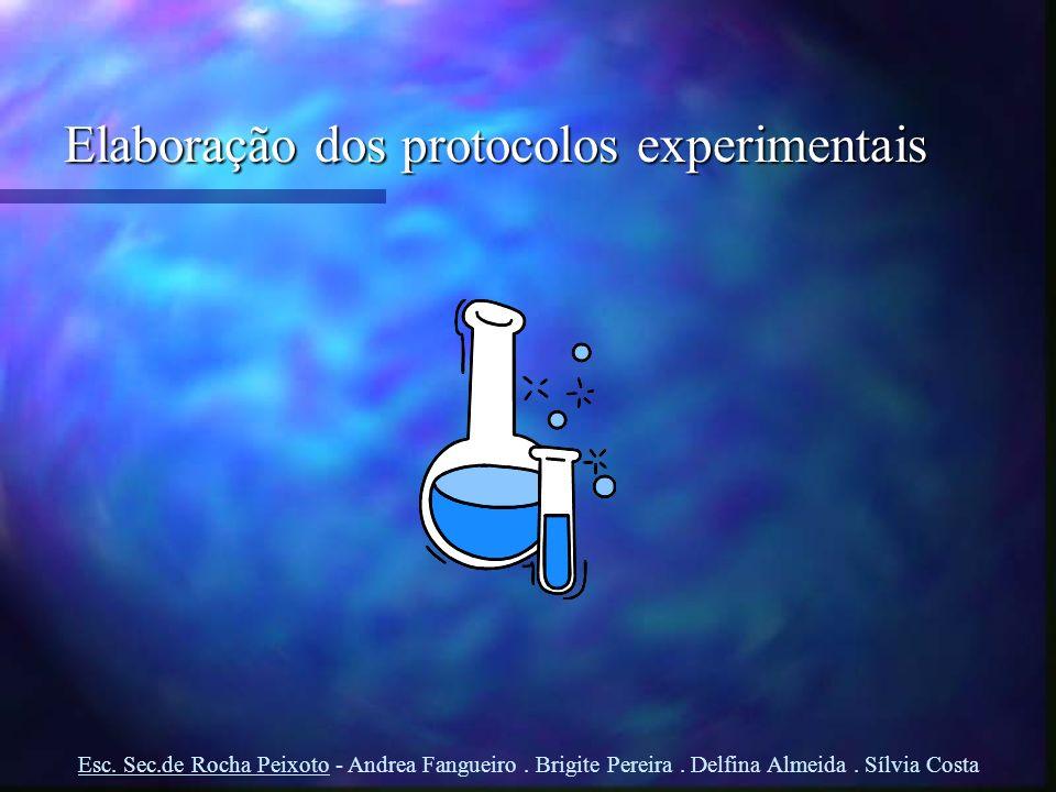 Elaboração dos protocolos experimentais Esc. Sec.de Rocha Peixoto - Andrea Fangueiro. Brigite Pereira. Delfina Almeida. Sílvia Costa