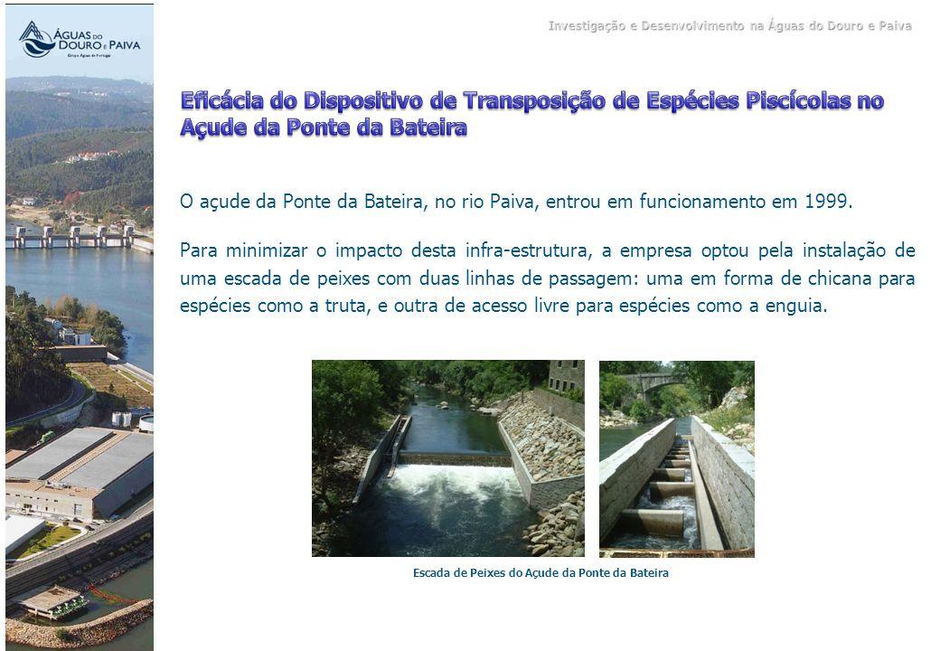 Escada de Peixes do Açude da Ponte da Bateira O açude da Ponte da Bateira, no rio Paiva, entrou em funcionamento em 1999. Para minimizar o impacto des