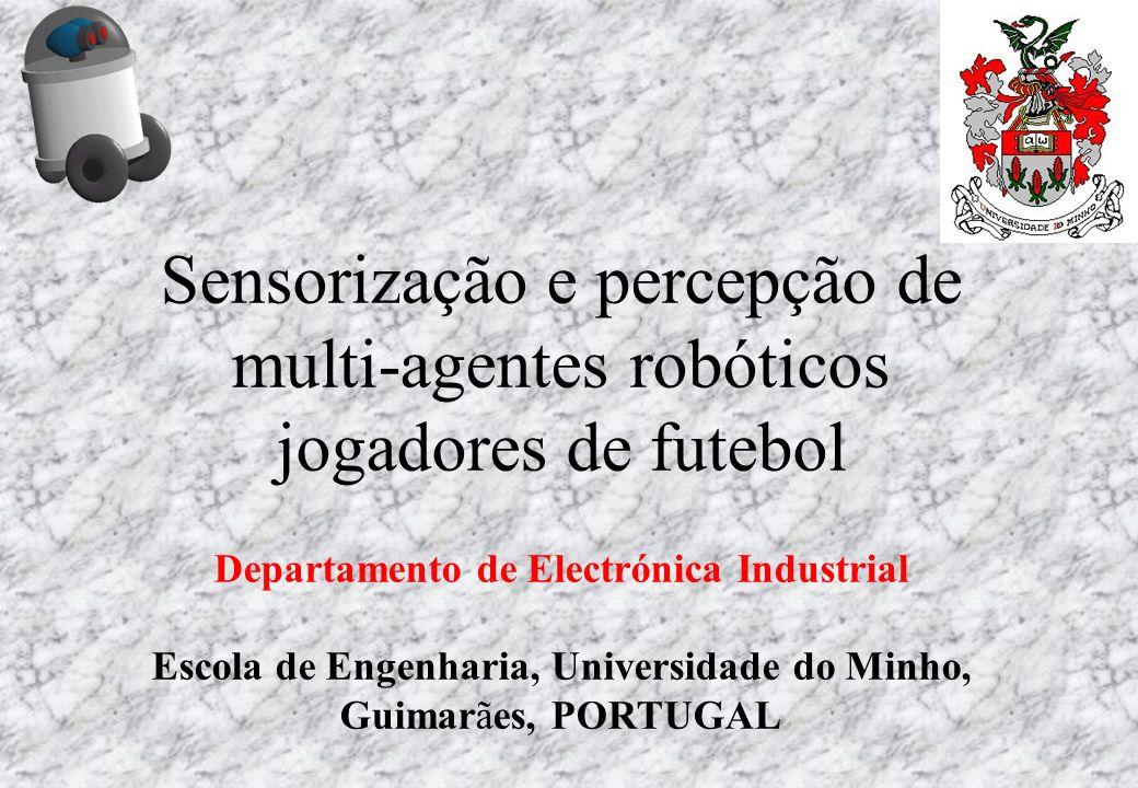 Sensorização e percepção de multi-agentes robóticos jogadores de futebol Departamento de Electrónica Industrial Escola de Engenharia, Universidade do
