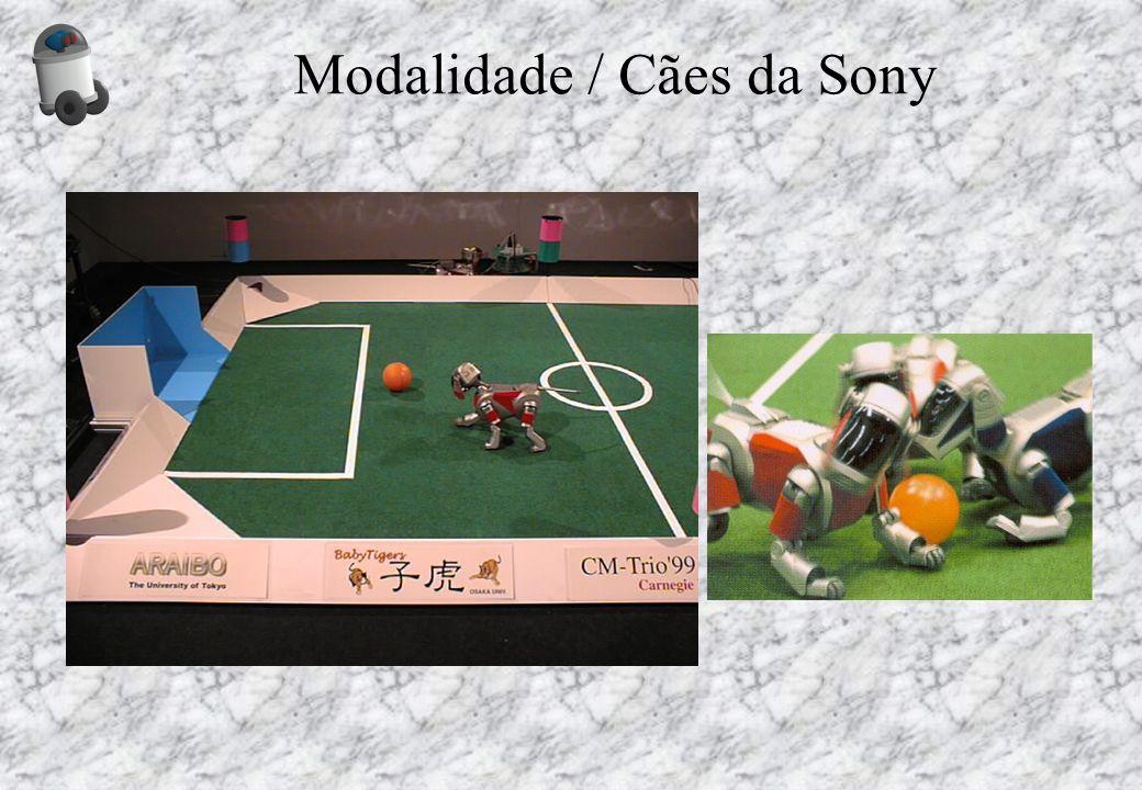 Modalidade / Cães da Sony