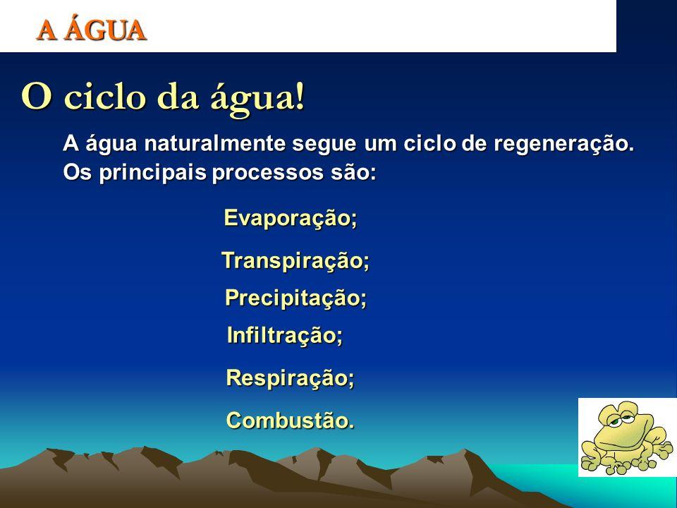 A ÁGUA O ciclo da água! A água naturalmente segue um ciclo de regeneração. Os principais processos são: Evaporação; Transpiração; Precipitação; Infilt