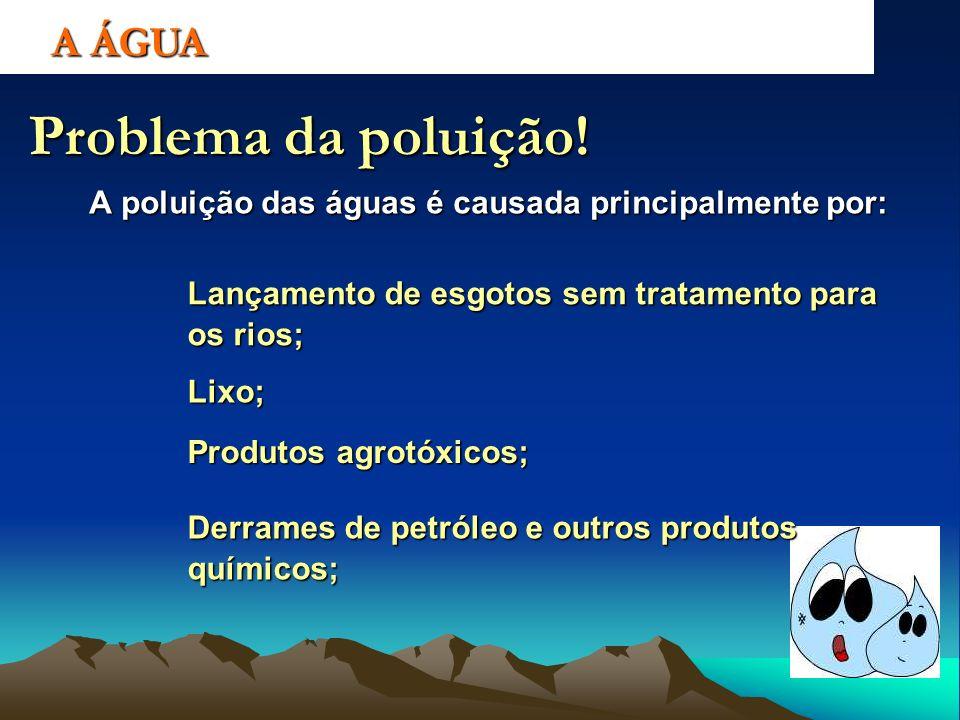 Problema da poluição! A poluição das águas é causada principalmente por: Lançamento de esgotos sem tratamento para os rios; Lixo; Produtos agrotóxicos