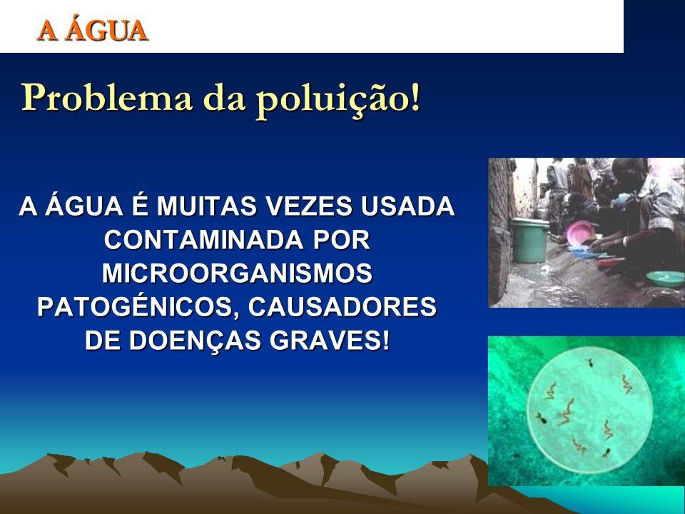 A ÁGUA Problema da poluição! A ÁGUA É MUITAS VEZES USADA CONTAMINADA POR MICROORGANISMOS PATOGÉNICOS, CAUSADORES DE DOENÇAS GRAVES!