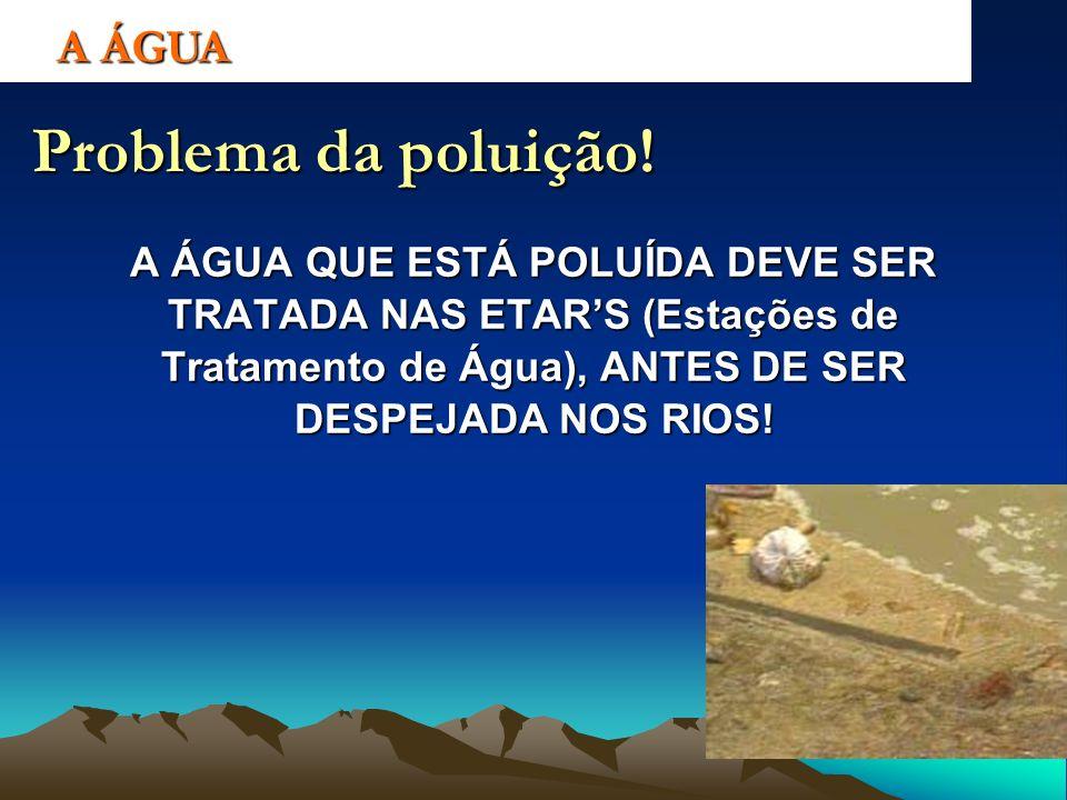 A ÁGUA Problema da poluição! A ÁGUA QUE ESTÁ POLUÍDA DEVE SER TRATADA NAS ETARS (Estações de Tratamento de Água), ANTES DE SER DESPEJADA NOS RIOS!