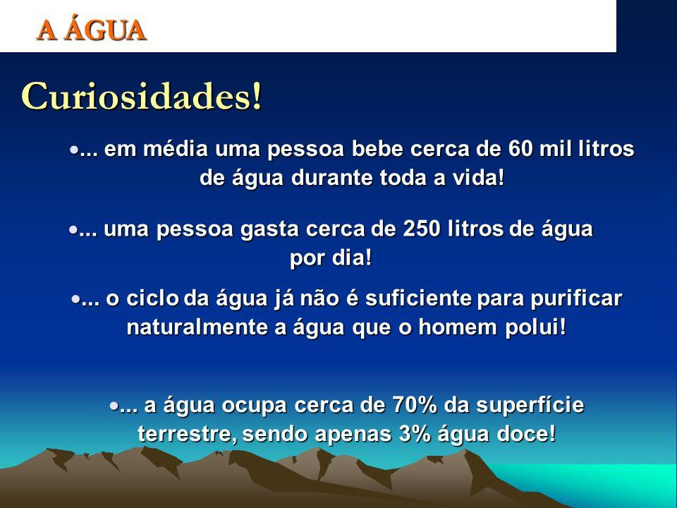 Curiosidades!... em média uma pessoa bebe cerca de 60 mil litros de água durante toda a vida!... em média uma pessoa bebe cerca de 60 mil litros de ág