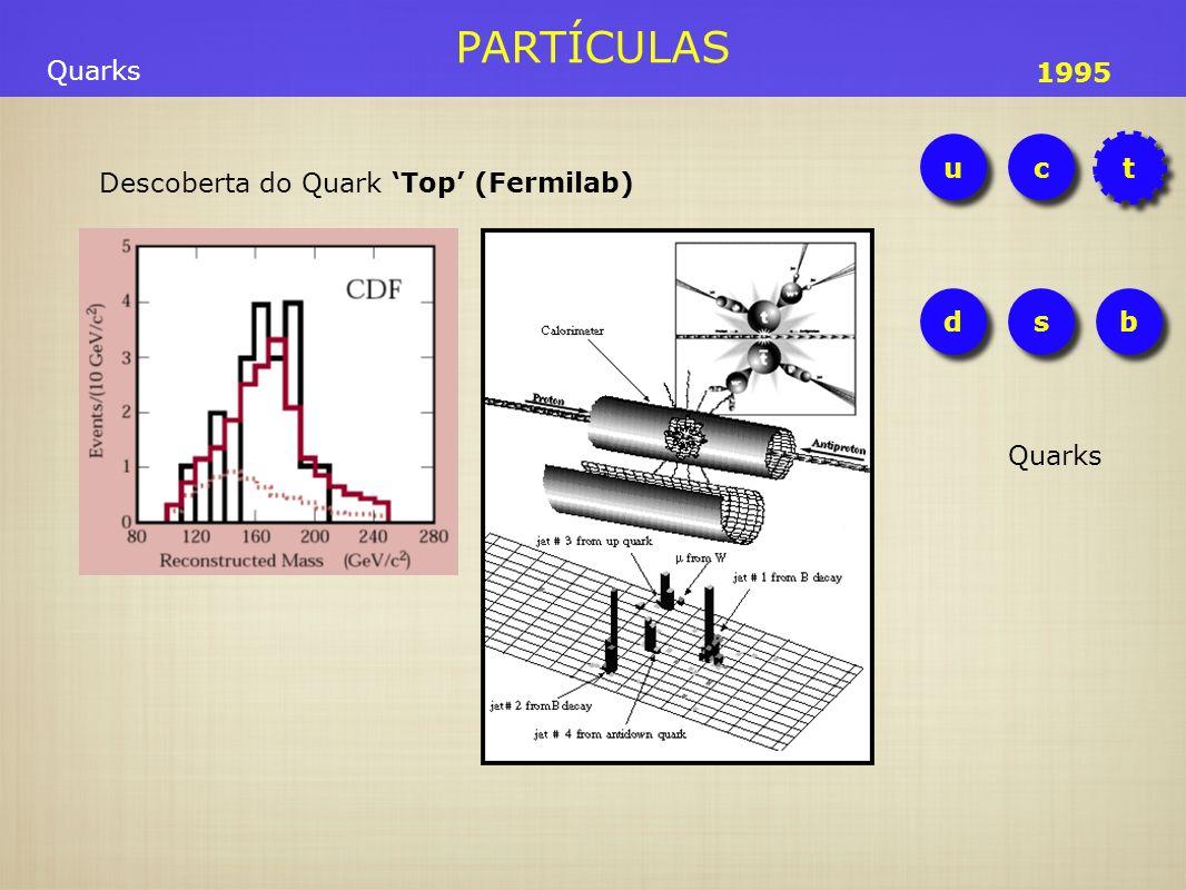 PARTÍCULAS Descoberta do Quark Top (Fermilab) Quarks 1995 c c u u d d s s Quarks t t b b