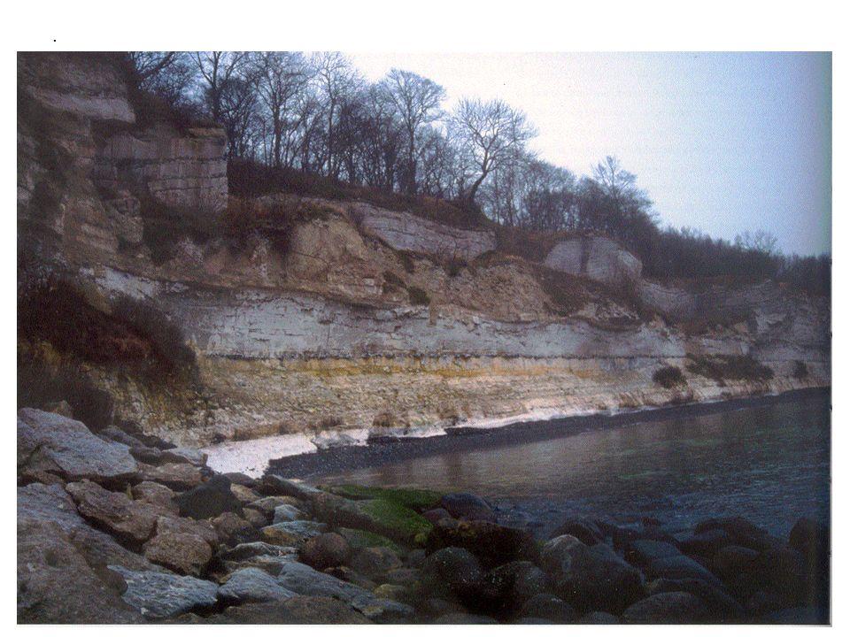 1.1.ORIGEM HISTÓRICA DA ELECTRICIDADE Impacto KT há 65 milhões de anos Extinção e sobrevivência Impacto KT Purgatorius Período Terciário (evolução dos continentes, mamíferos e coníferas) O pinus succinifer A resina do succinifer A succinite (ambar), fóssil da resina do succinifer