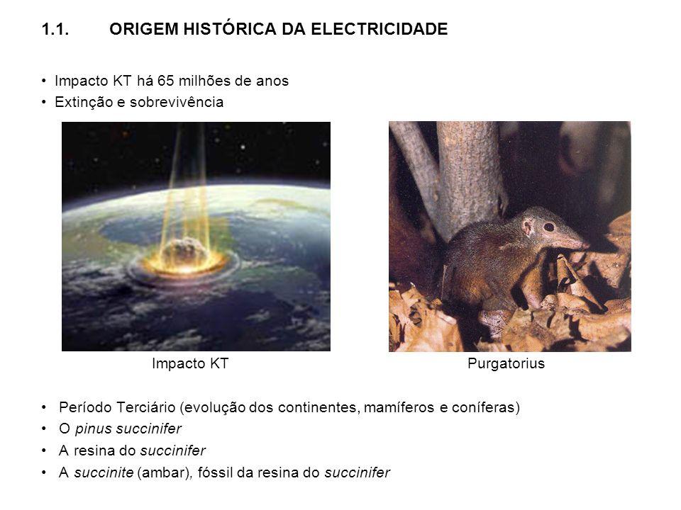 1.1.ORIGEM HISTÓRICA DA ELECTRICIDADE Impacto KT há 65 milhões de anos Extinção e sobrevivência Impacto KT Purgatorius Período Terciário (evolução dos