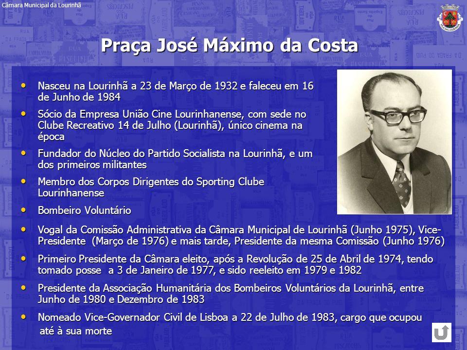 Vogal da Comissão Administrativa da Câmara Municipal de Lourinhã (Junho 1975), Vice- Presidente (Março de 1976) e mais tarde, Presidente da mesma Comi