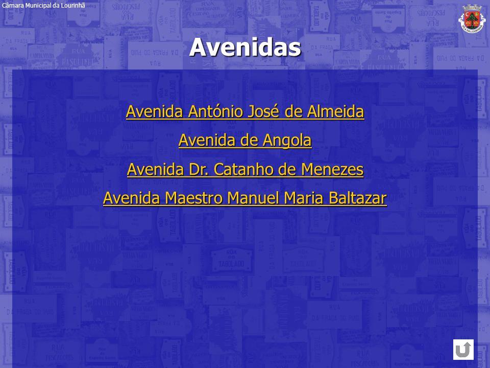 Avenidas Avenida António José de Almeida Avenida António José de Almeida Avenida Dr. Catanho de Menezes Avenida Dr. Catanho de Menezes Avenida de Ango
