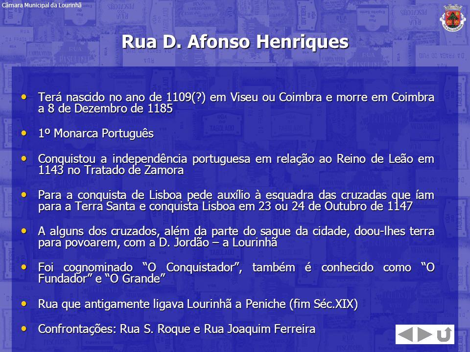 Rua D. Afonso Henriques Terá nascido no ano de 1109(?) em Viseu ou Coimbra e morre em Coimbra a 8 de Dezembro de 1185 Terá nascido no ano de 1109(?) e