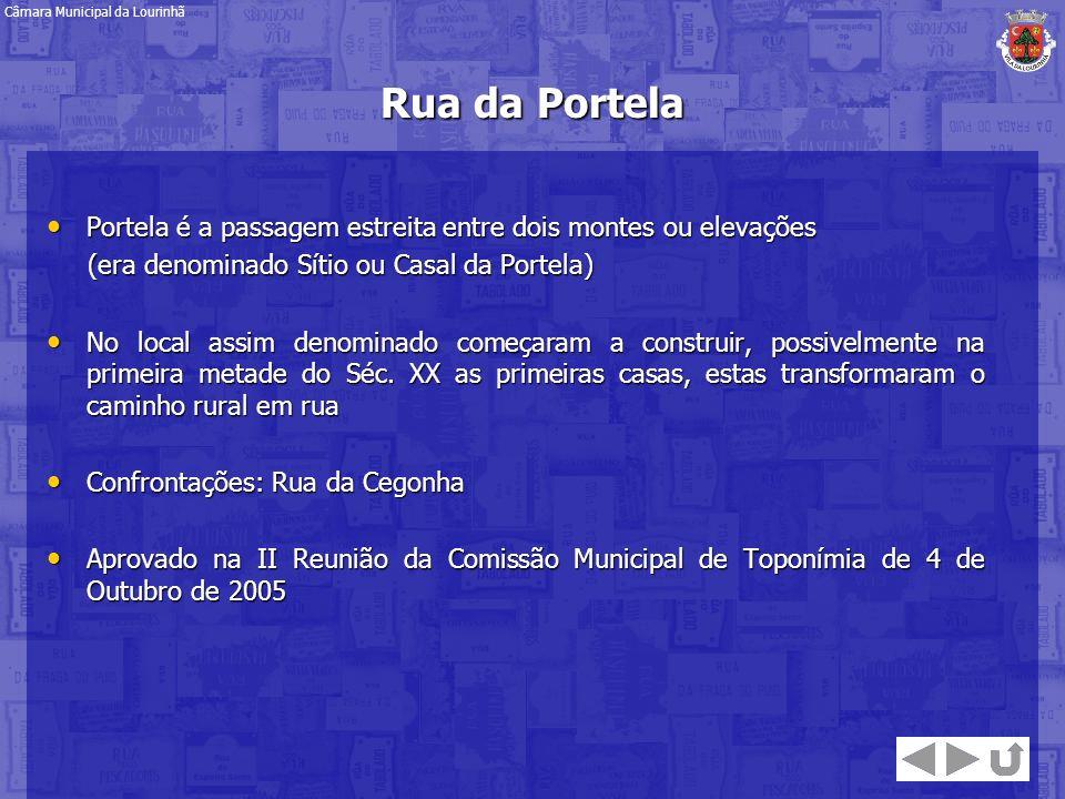 Rua da Portela Portela é a passagem estreita entre dois montes ou elevações Portela é a passagem estreita entre dois montes ou elevações (era denomina